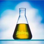 Il biodiesel in Italia