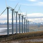 Energia eolica in crescita, ma il Governo deve intervenire