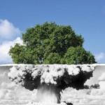 Greenpeace: i dieci motivi per cui dire no al nucleare