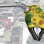 In Brasile dilaga il bioetanolo