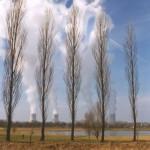 Nucleare: a 10 mesi dall'avvio non esiste ancora una normativa chiara