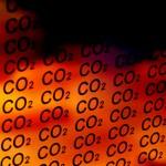 Puglia: Progetto Pilota Enel per assorbimento CO2