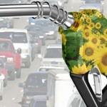 Esclusiva italiana nella produzione di bioetanolo di seconda generazione