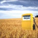 Quale bilancio energetico per i biocarburanti?