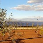 Analisi per la riqualificazione di campi fotovoltaici
