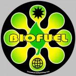 Energia: crescono le vendite di biocarburanti nell'Ue
