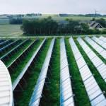 Raggiungere l'indipendenza energetica: La lezione di Samso