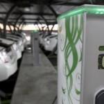La cooperativa RadioTaxi 3570 di Roma diventa green