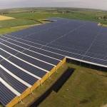 Coltivazione ginseng: il più grande impianto Fv su tetto in Francia