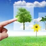 Nel futuro ci saranno i cellulari biodegradabili