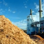 Energia da biomassa: dal CNR un nuovo metodo per migliorarne la qualità