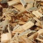 Rinnovabili: le biomasse inquinano più dei combustibili tradizionali