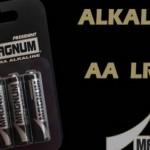 In arrivo Magnum, le prime batterie amiche dell'ambiente