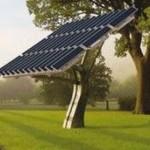Fotovoltaico: nuove celle solari ricavate dalla cellulosa degli alberi