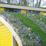 Olanda: tegole in materiale riciclato per tetti verdi