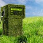 Biocarburante: alghe e liquami diventano energia green a Cadice