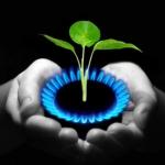 Risparmiare energia in cucina, i consigli di Energie Sensibili.