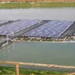 Pannelli solari galleggianti, la nuova frontiera del fotovoltaico