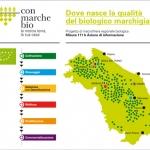 Consorzio Marche Biologiche, quando una cooperativa diventa green