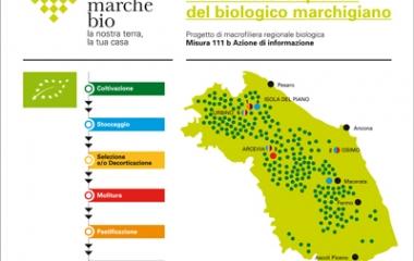 Consorzio Marche Biologiche
