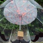 Un ombrello che misura l'inquinamento dell'aria