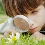 Educazione ambientale obbligatoria nelle scuole