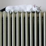 Honeywell: come ridurre la bolletta del riscaldamento