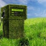 Biogas: una nuova biobatteria alimentata con scarti